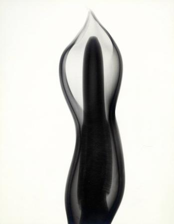 """Philodendron,"" 1938, vintage gelatin silver print, 11 3/8 x 9 inches. All imagery courtesy Joseph Bellows Gallery."